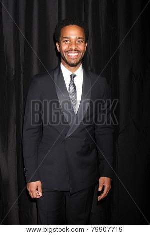LOS ANGELES - JAN 10:  Andre Holland at the 40th Annual Los Angeles Film Critics Association Awards at a Intercontinental Century City on January 10, 2015 in Century City, CA