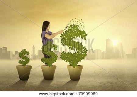 Woman Cutting The Money Tree