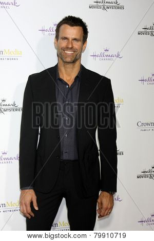 LOS ANGELES - JAN 8:  Cameron Mathison at the Hallmark TCA Party at a Tournament House on January 8, 2014 in Pasadena, CA