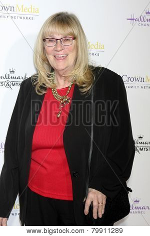 LOS ANGELES - JAN 8:  Joanne Fluke at the Hallmark TCA Party at a Tournament House on January 8, 2014 in Pasadena, CA