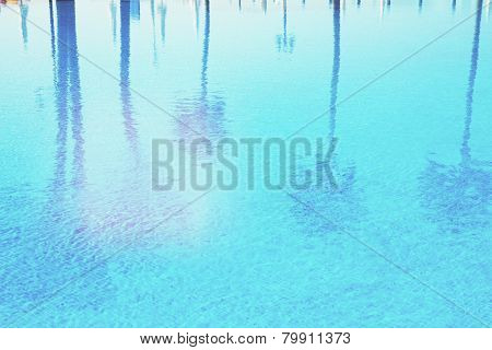 pool with reflections of palm trees