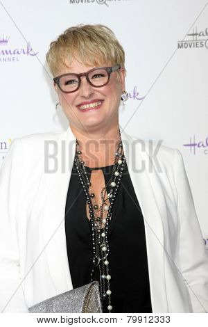 LOS ANGELES - JAN 8:  Dr, JJ Levenstein at the Hallmark TCA Party at a Tournament House on January 8, 2014 in Pasadena, CA