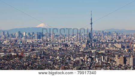 Tokyo sky tree and mountain Fuji