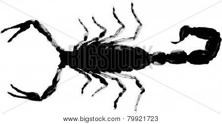 illustration with small black scorpion from dots isolated on white background