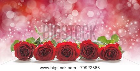 Roses for the people you love