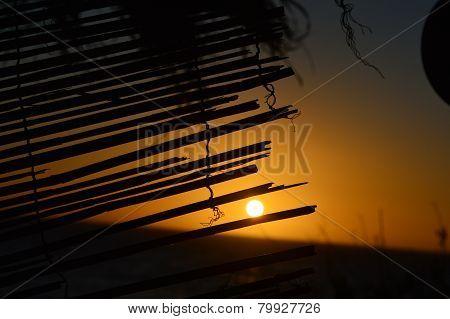 Particular sunset