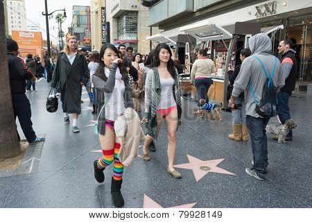 Young Women Without Pants In Hollywood In The