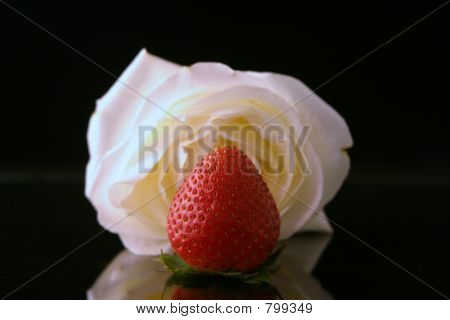 White rose and a strawberry