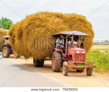 Thanjavour, India - February 13: Indian Rural Men Stopped At The Curb On A Car With Straw.  India, T