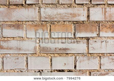 Brick Wall Sidelit