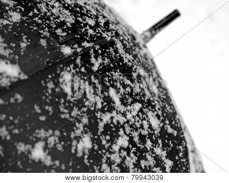 Black Umbrella And White Snow In Contrast During A Snowfall