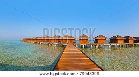 Bungalows on tropical Maldives island - nature travel background