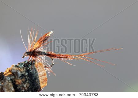 Brown Caddisfly Imitation