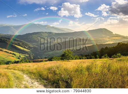 Path On Hillside Meadow In Mountain At Sunrise