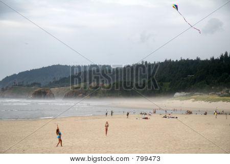 Kite Flier