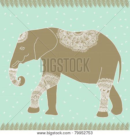 Tender Elephant