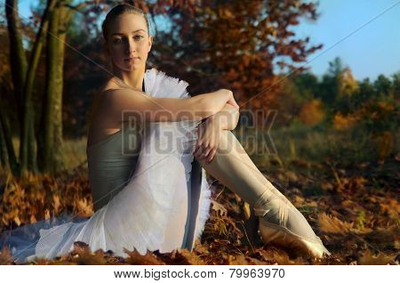 dancer in the autumn forest