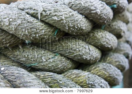 Coiled Rope Background