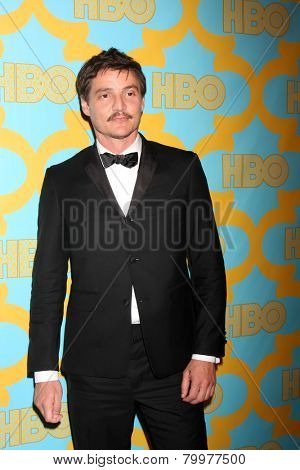 LOS ANGELES - JAN 11:  Pedro Pascal at the HBO Post Golden Globe Party at a Circa 55, Beverly Hilton Hotel on January 11, 2015 in Beverly Hills, CA