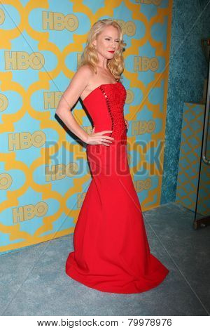 LOS ANGELES - JAN 11:  Tara Buck at the HBO Post Golden Globe Party at a Circa 55, Beverly Hilton Hotel on January 11, 2015 in Beverly Hills, CA