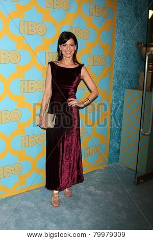 LOS ANGELES - JAN 11:  Perry Reeves at the HBO Post Golden Globe Party at a Circa 55, Beverly Hilton Hotel on January 11, 2015 in Beverly Hills, CA
