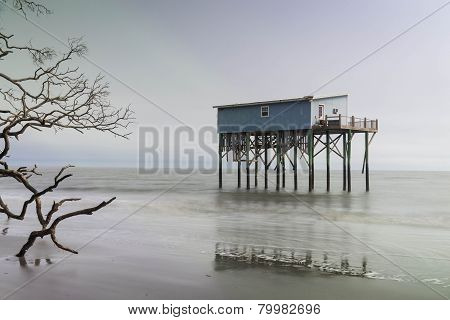 Cabin on Hunting Island