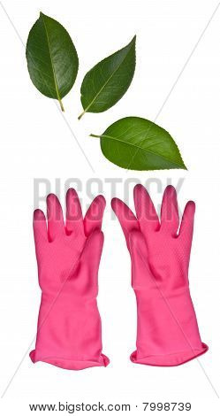 Pink Cleaning Gloves Reaching For Leaves