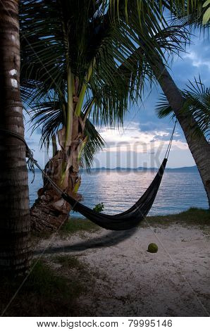 Evening view of hammock strung between two palms on tropical island.