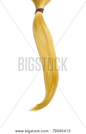 Golden blond hair, ponytail, isolated on white background