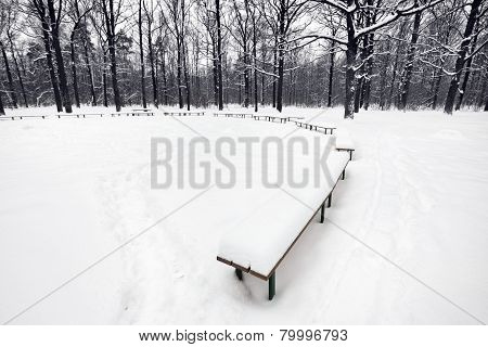 Snowbound Public Area With Benches In City Park