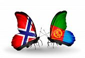 picture of eritrea  - Two butterflies with flags on wings as symbol of relations Norway and Eritrea - JPG