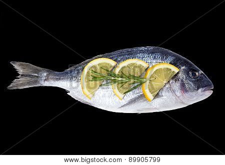 Fresh Fish Dorado On A Black Background