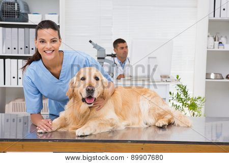 Smiling vet examining a dog in medical office