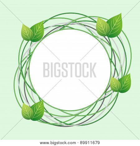 Creative Eco Frame With Circles And Fresh Leaves