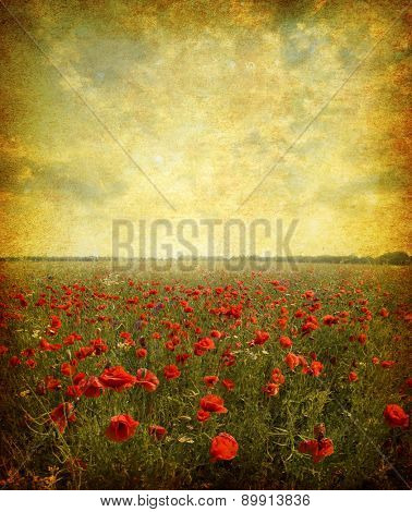 Photo of a poppies pasted on a grunge background
