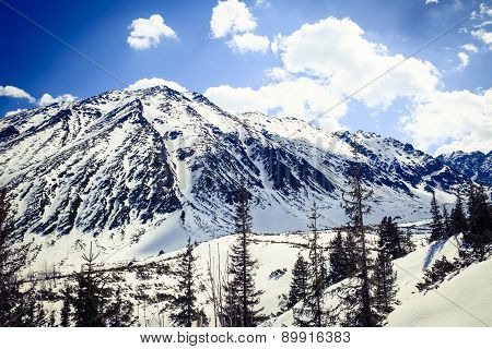 Mountain Beautiful Landscape Winter Sunny Day