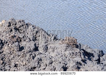 Black Mud Against Lake Water