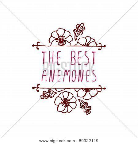 Handsketched typographic element with anemones