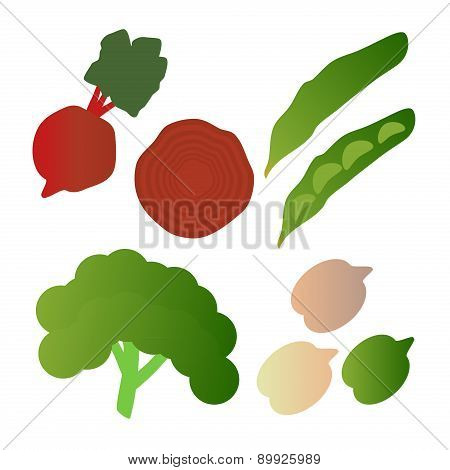 Kale, Broad Beans, Beets,  Isolated On White Background. Editable And Design Suitable Vector Illustr