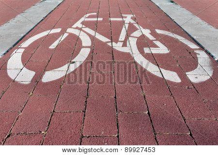Particular Bike Path