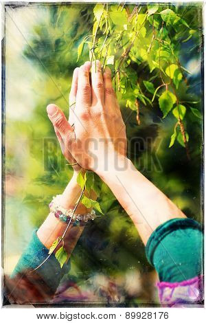 Spring Prayer - Adoring The Healing Powers Of The Spring, Tree In Hands, With Color Pattern