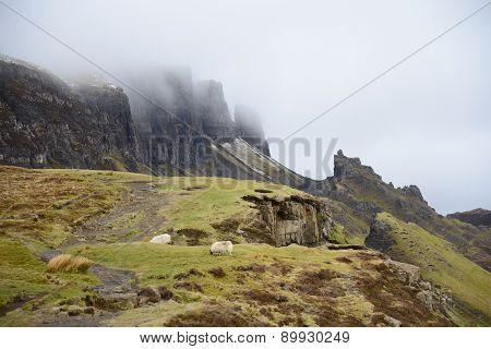 Montagne dans la brume et moutons