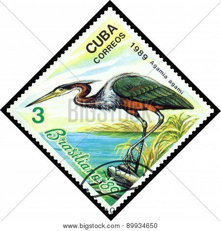 Vintage  Postage Stamp.  Bird Agamia Agami.