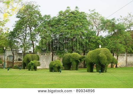 The Green Elephant Trees In Bang Pa-in Palace