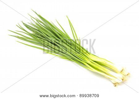 thai onion spring group