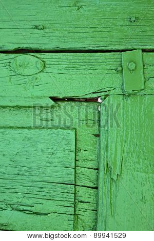 Piece Of Colorated Green Wood