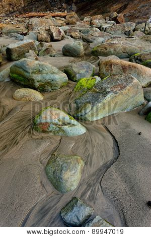 Moss covered rocks on beach.