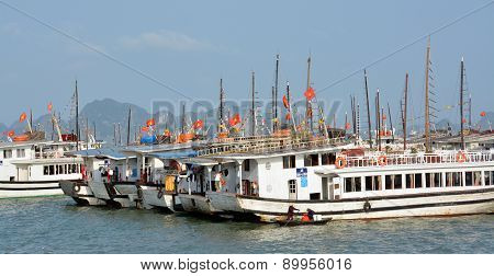Tourist Boats Moored In Halong Bay