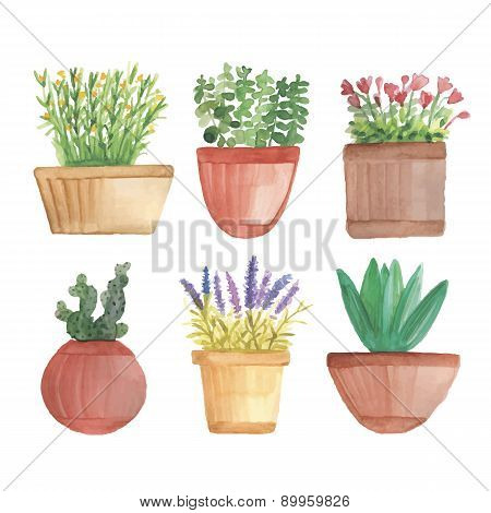 Watercolor flowers in pots