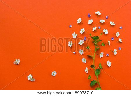 Creative Tree Made From White Flowers On Orange Background.yarrow Flower.useful As Background